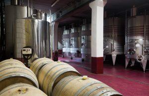 Depósito para bodegas de vino
